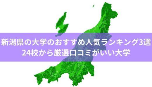 新潟県の大学のおすすめ人気ランキング3選│24校から厳選口コミがいい大学