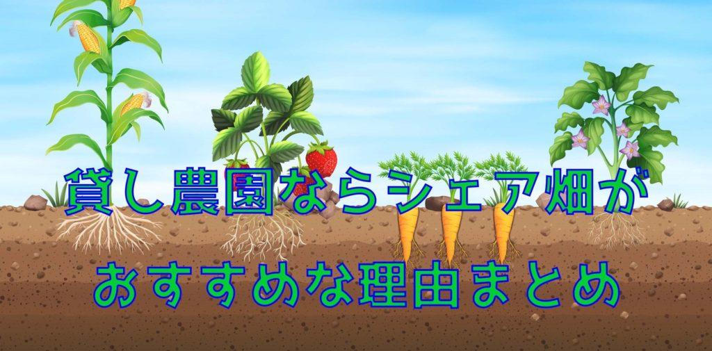 貸し農園を探しているならシェア畑がおすすめな理由まとめ